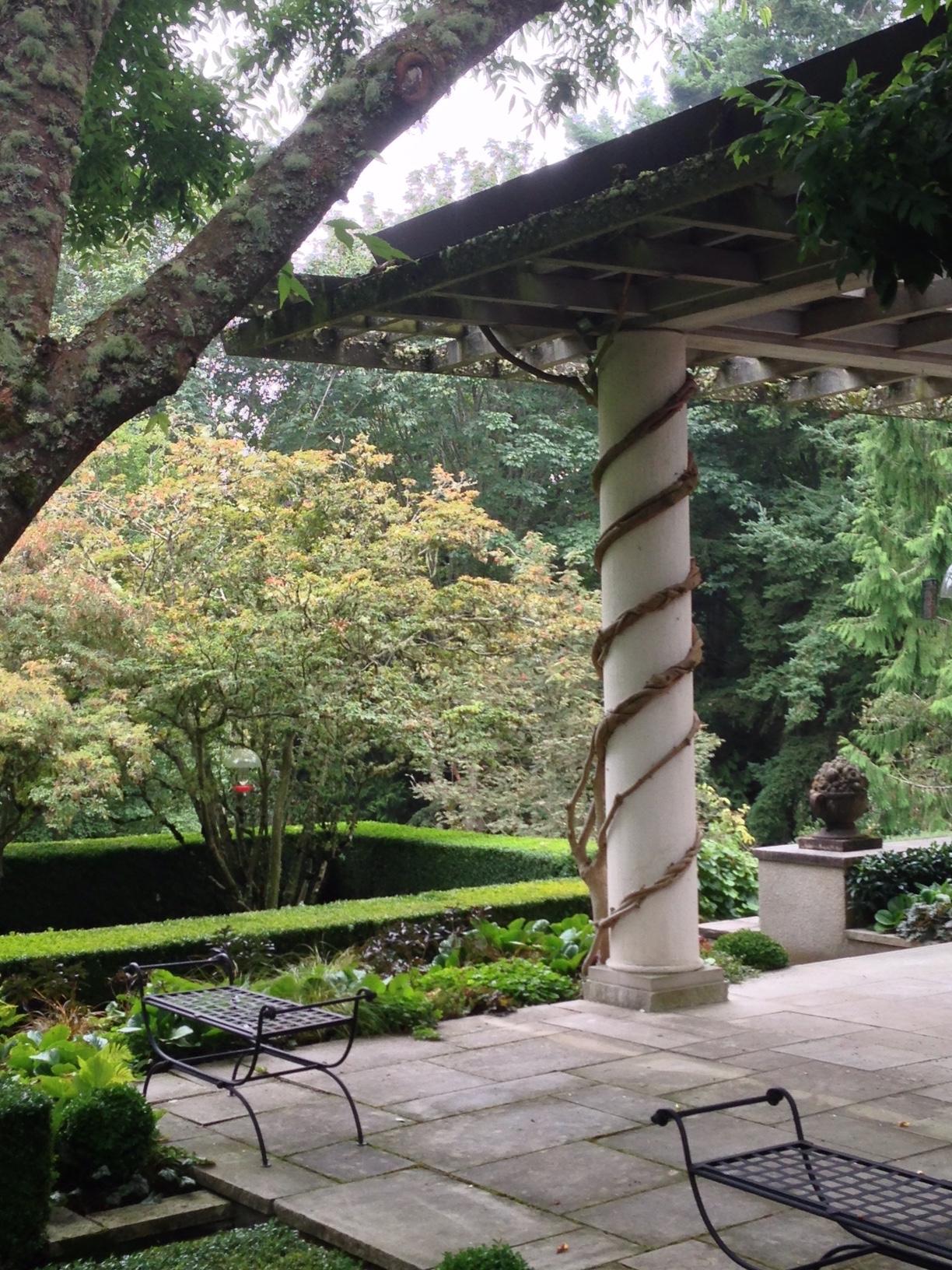 Andrew garden.JPG