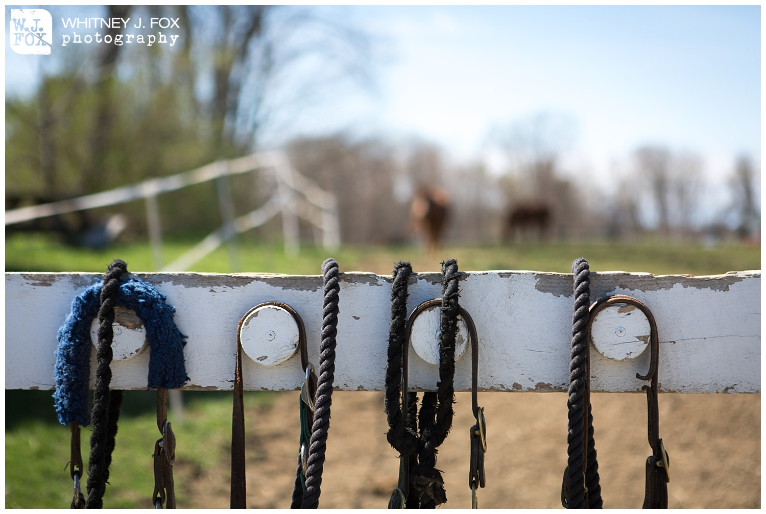 homestead_rest_and_be_thankful_farm_lyman_maine_rustic_wedding_venue_whitney_j_fox_weddings_1345.jpg