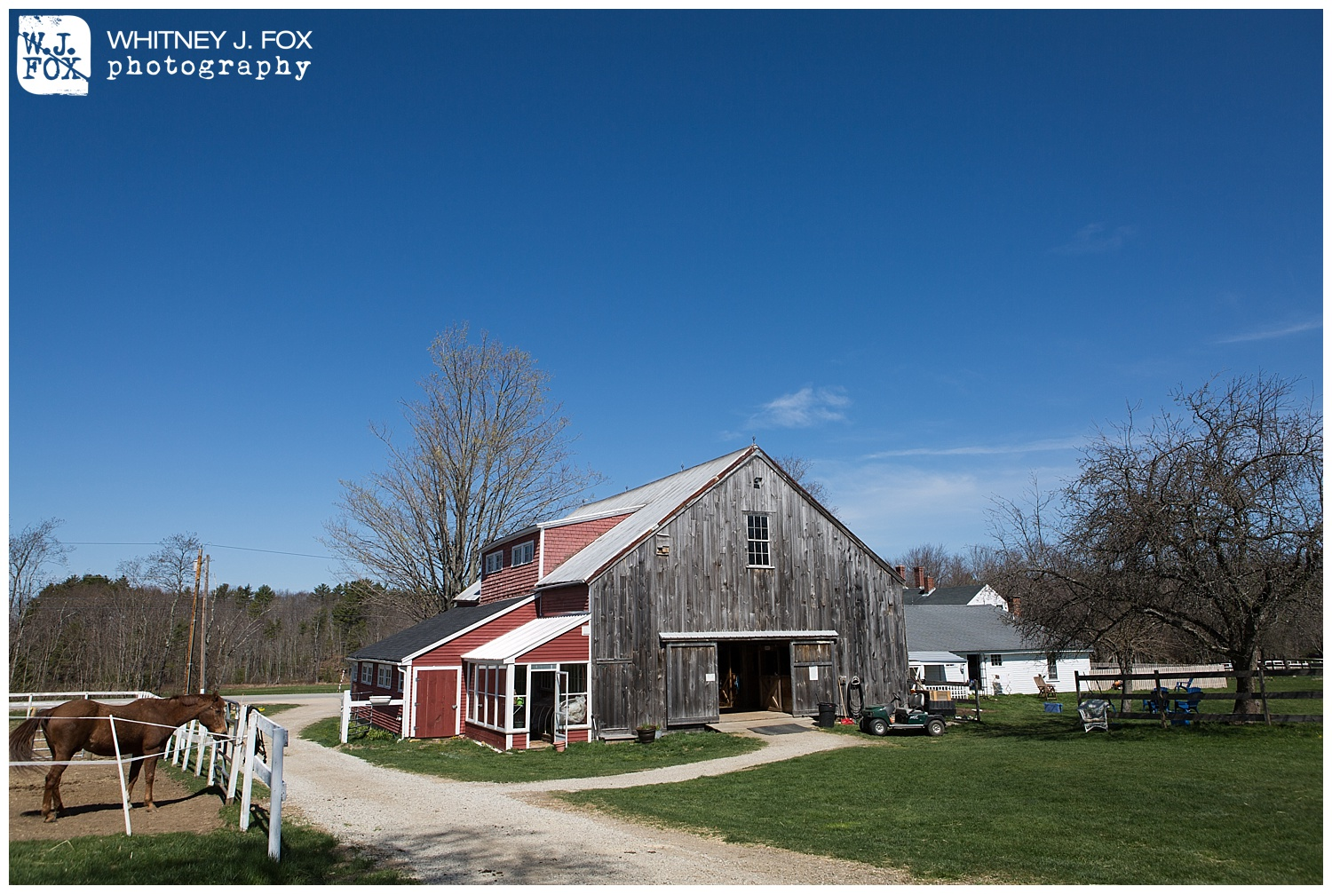 homestead_rest_and_be_thankful_farm_lyman_maine_rustic_wedding_venue_whitney_j_fox_weddings_1358.jpg