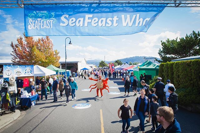 Last call for surveys! Please take our 2019 Bellingham SeaFeast Attendee Survey. This information helps us plan for an even better SeaFeast 2020 and share the news of this year's event with our stakeholders. Link in bio! We loved hosting you all at Squalicum Harbor last weekend - thank you for coming! #seafeast2019