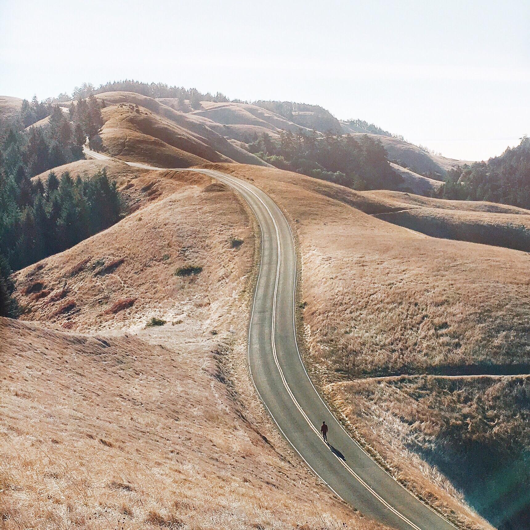 Mount Tamalpais.