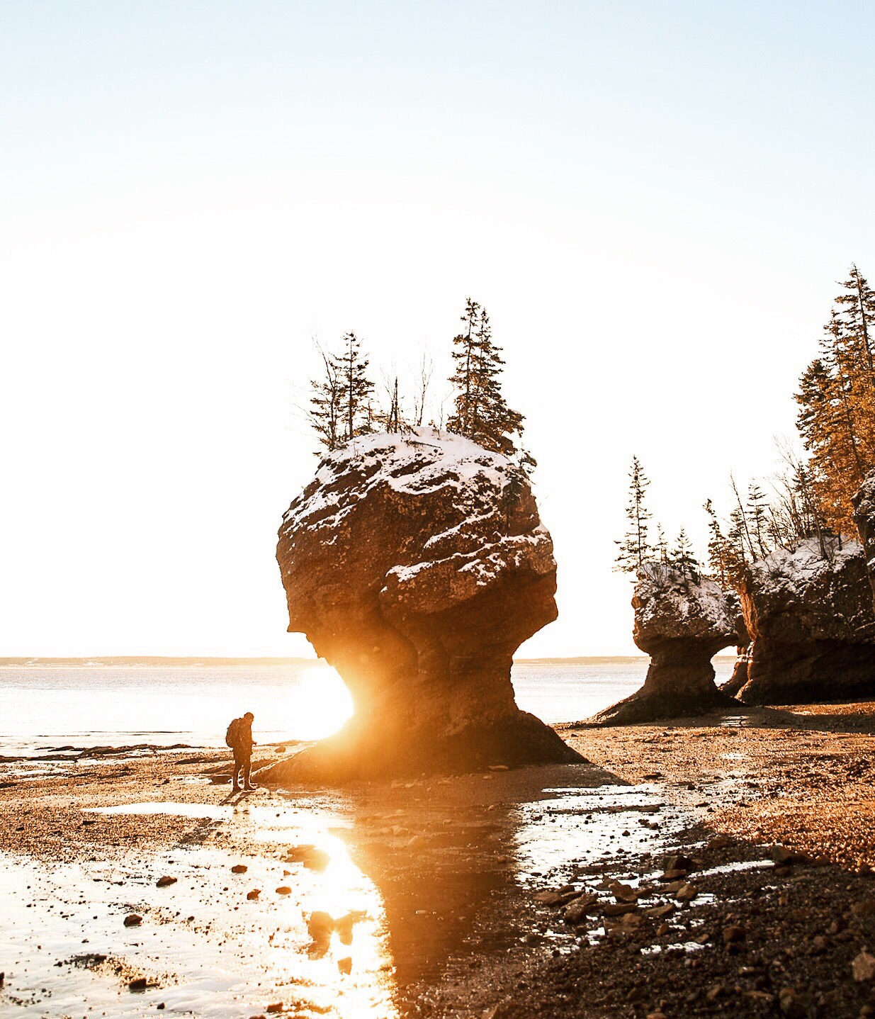 Sunrise at Hopewell Rocks. NB.
