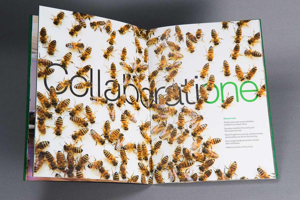 book bees centre spread