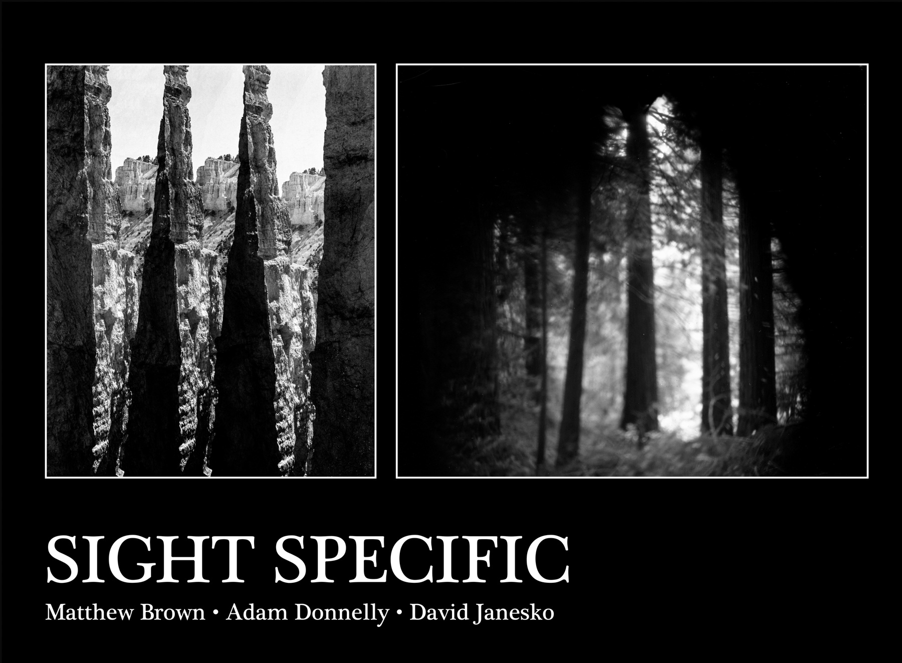 Sight Specific: July 27 - August 17th