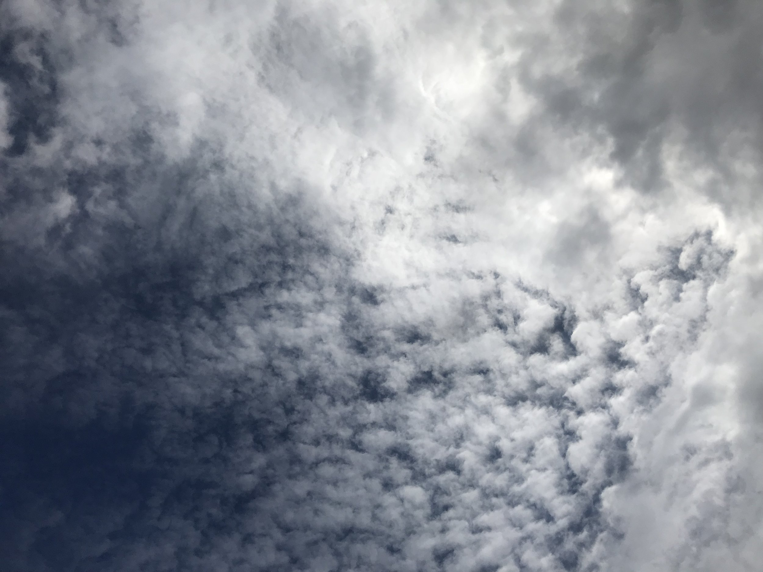 Portland sky.jpg