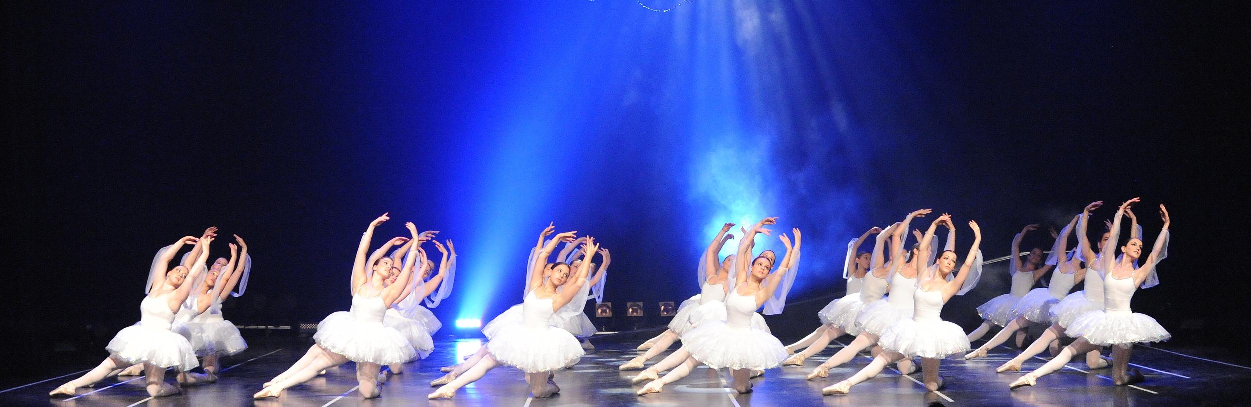 Photo d'ouverture site.JPG