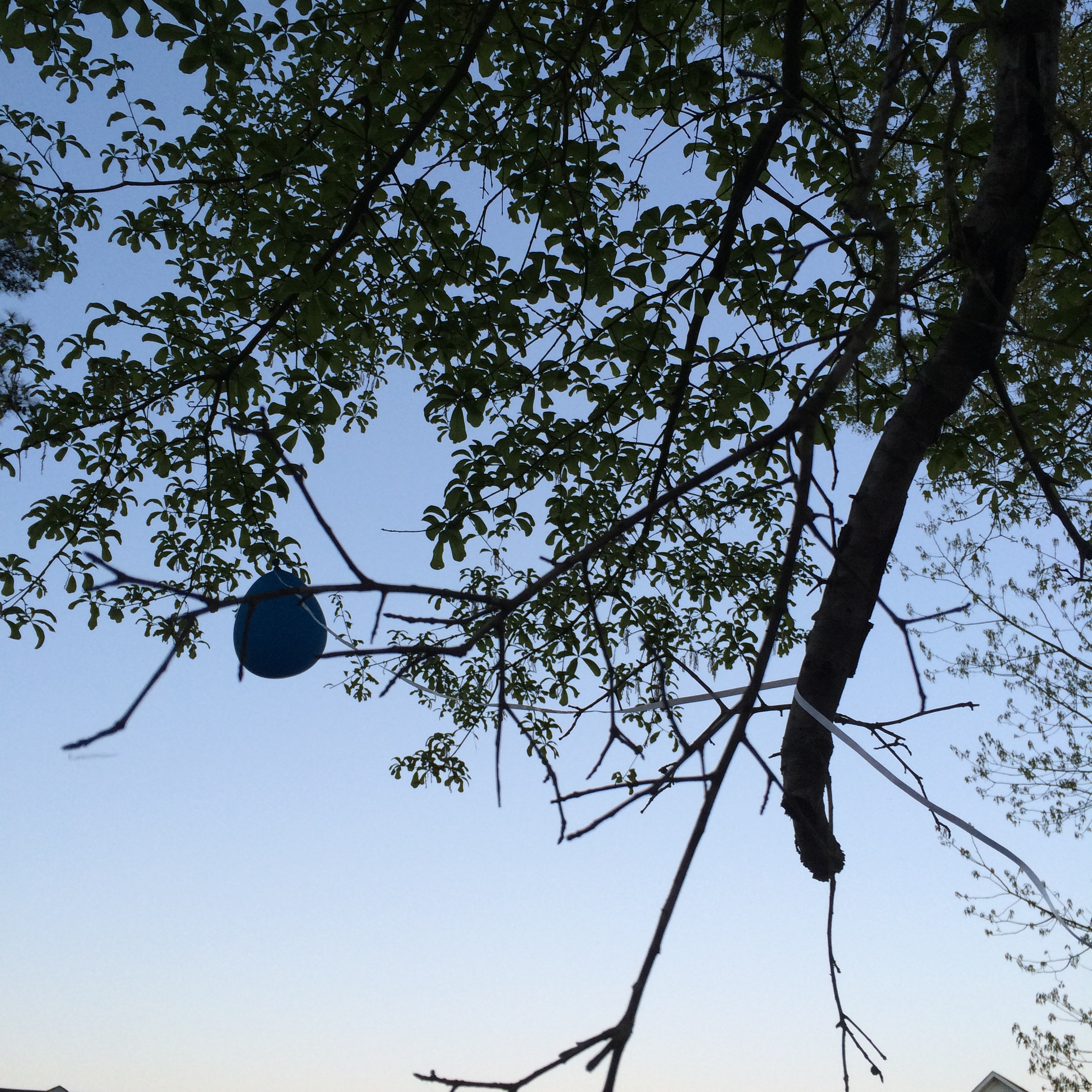 Like this balloon, I was alone and stuck.