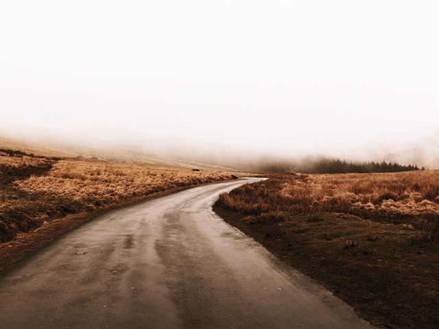 Into the fog ☁️