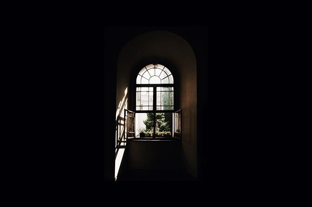 """""""If the window of opportunity appears, don't pull down the shade."""" - Tom Peters"""