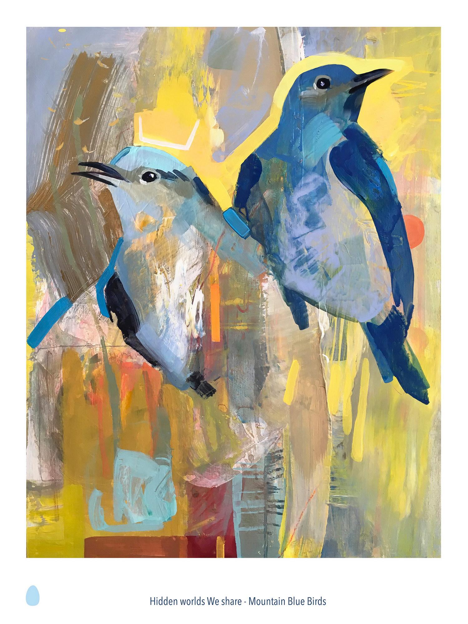 Sun and Sky - Mountain Bluebirds