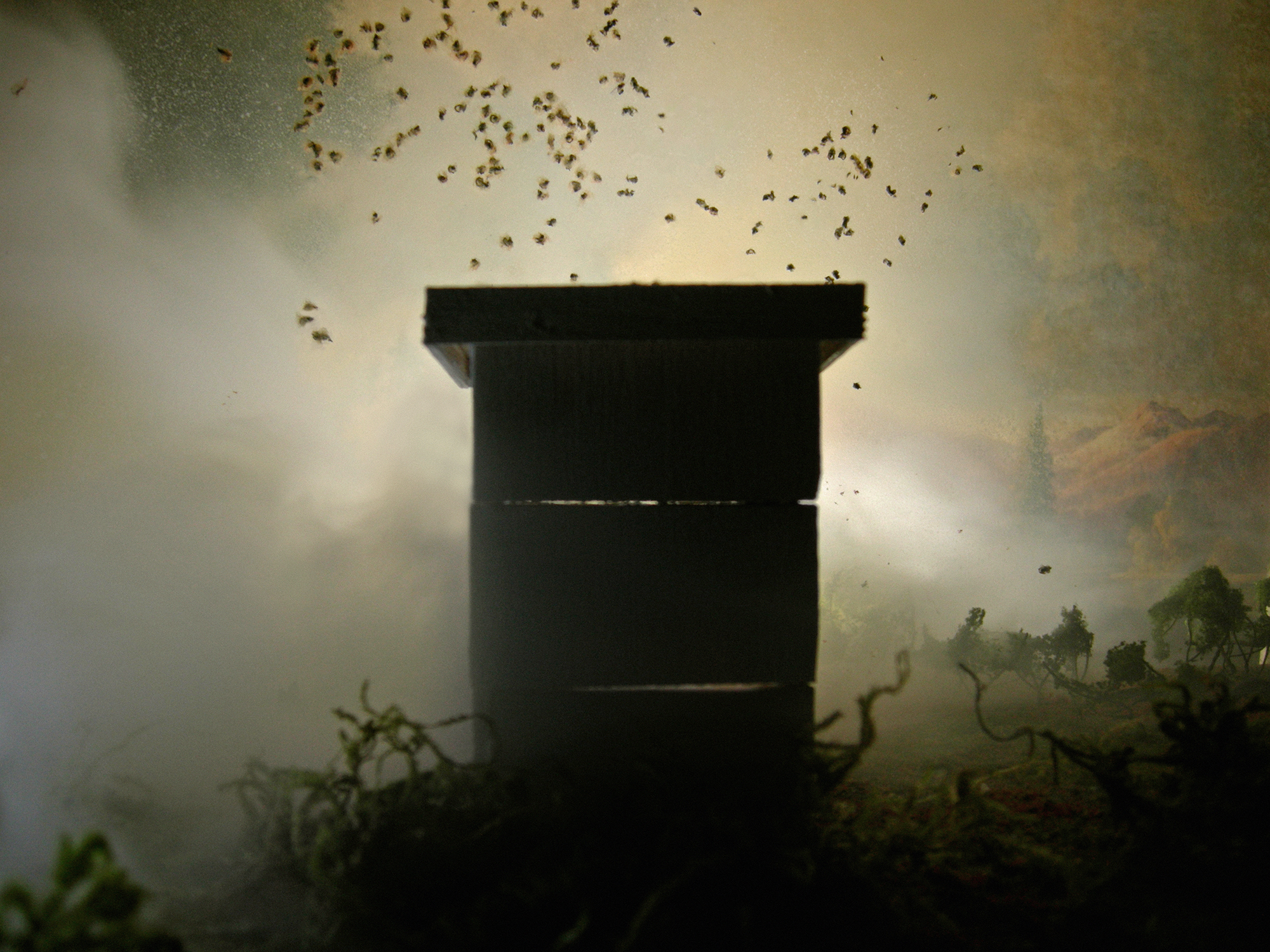 Misty Hive (framed)