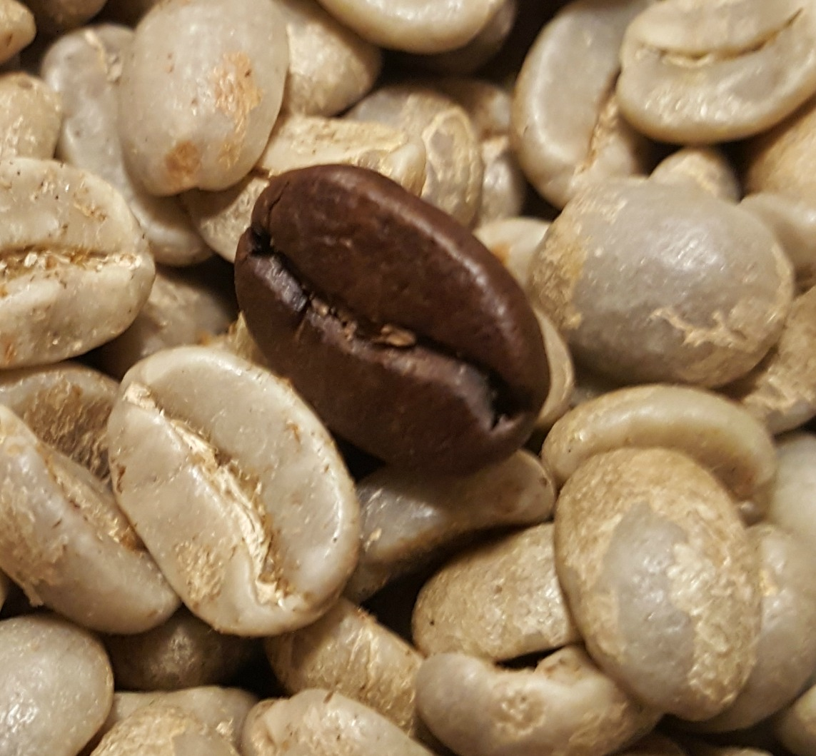 1 - 1 - 20160518_204850 green coffee next to fully roasted close up colombia.jpg