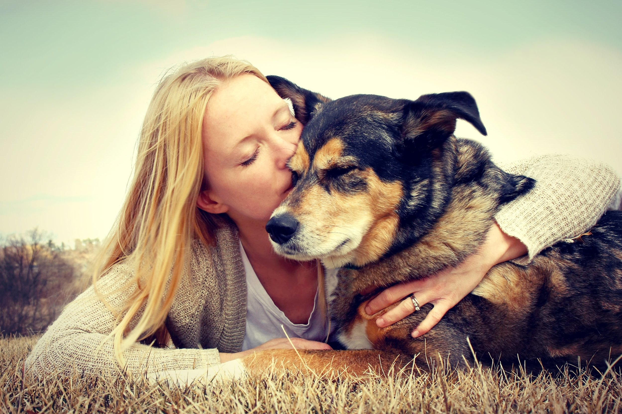 Rehoming a new dog guide and help, informationto help you prepare and what to expect.