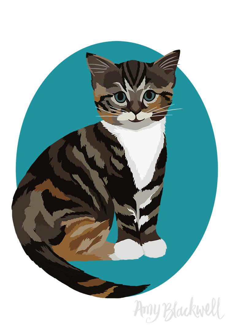 kitten-small-.jpg
