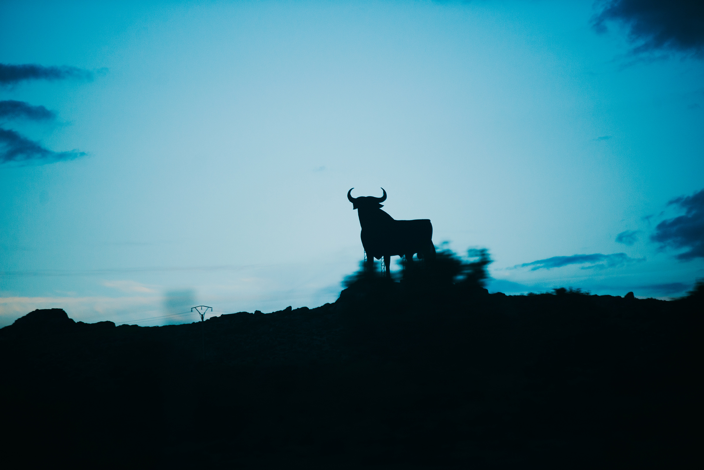 ⓒ Ania Shrimpton-October Drift -Mexico-50.jpg