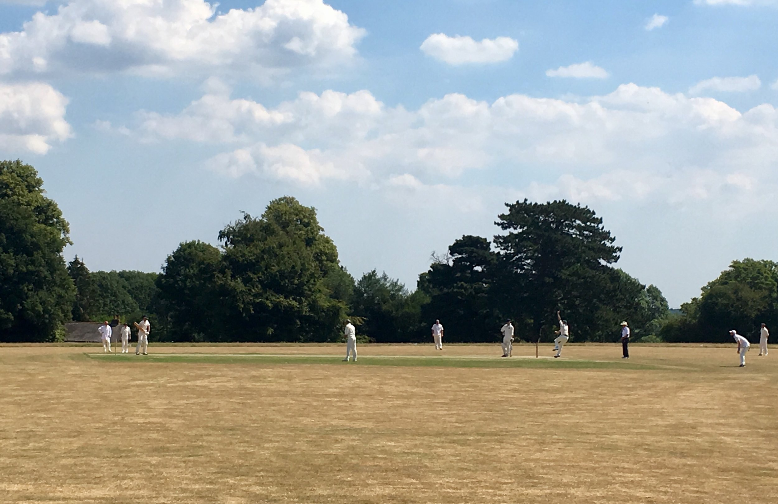 BB (Mavor) batting v Trustees.jpg