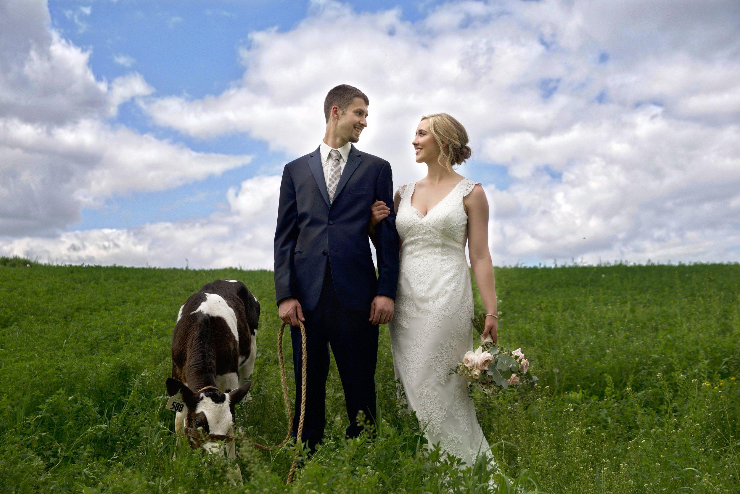 Nathan and Amy - Cow.jpeg