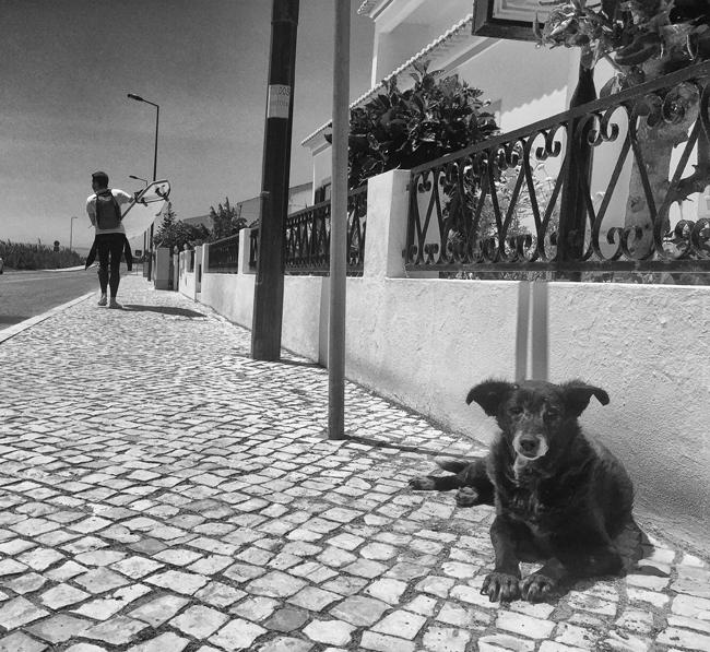 The Local Watch - Sagres - Algarve - Portugal -2016