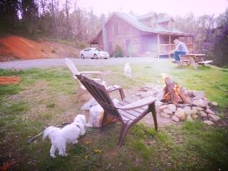 Virginia Log Cabin - George and boys.JPG