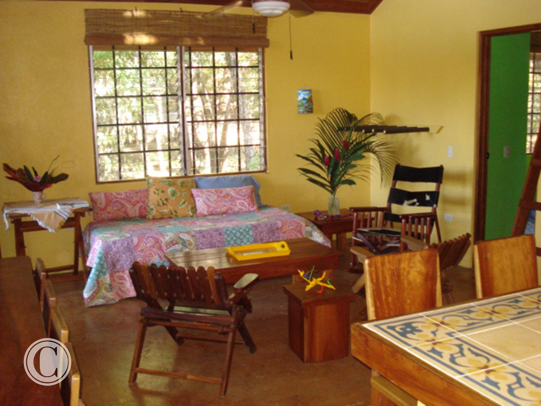 living-area-costa-rica-cornelius-construction (4).jpg