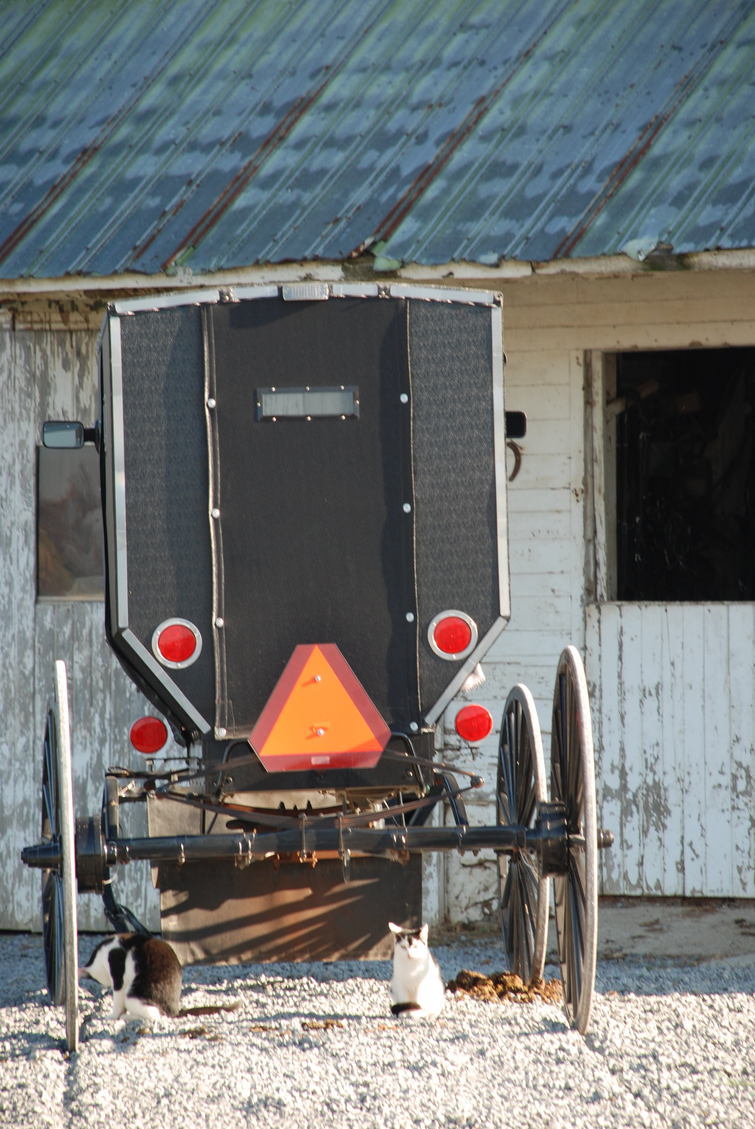 134 Living the Amish Life.JPG