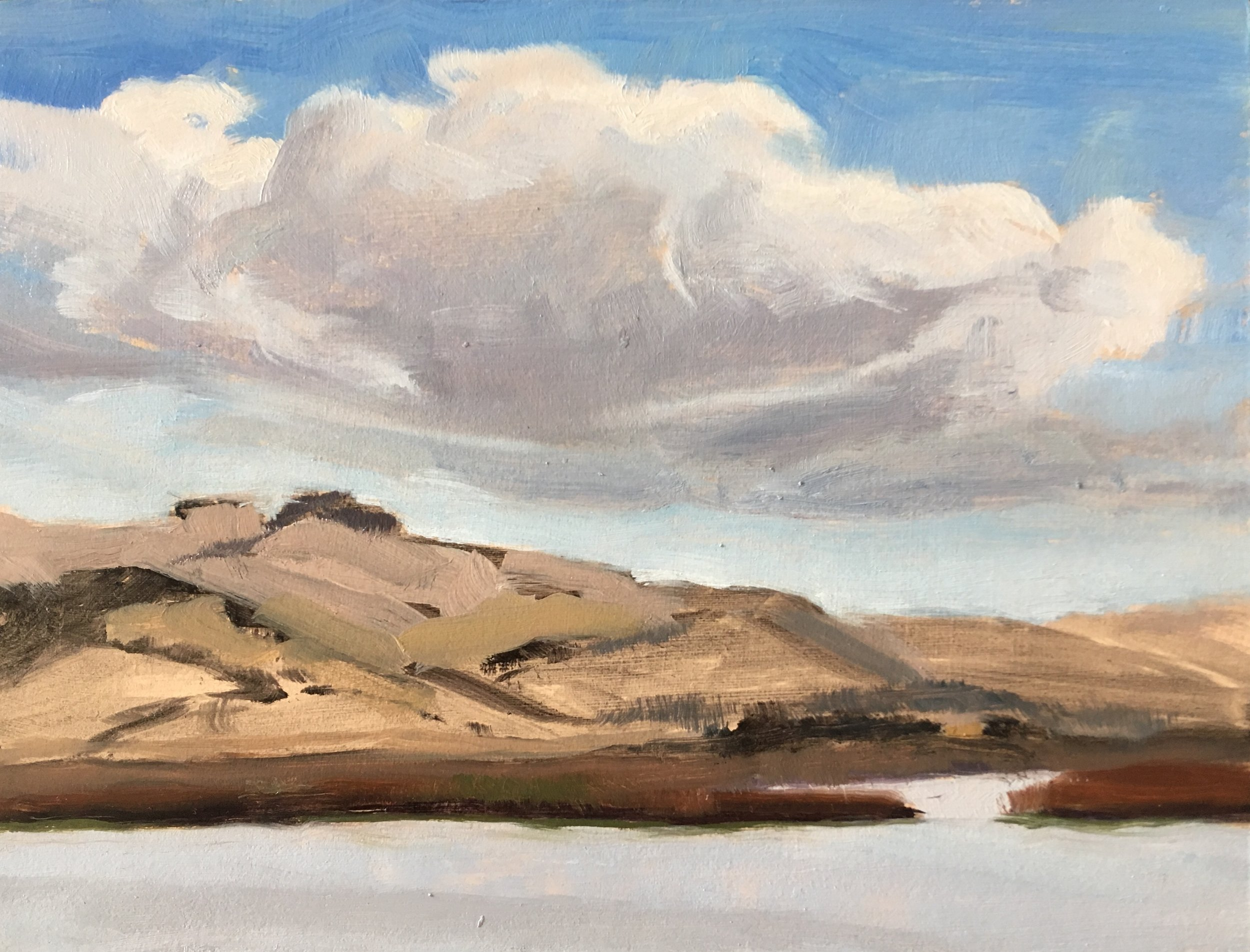 I loved painting this oil sketch of the Fagan Marsh from the Napa Marina. A beautiful clear day with clouds racing across the sky.