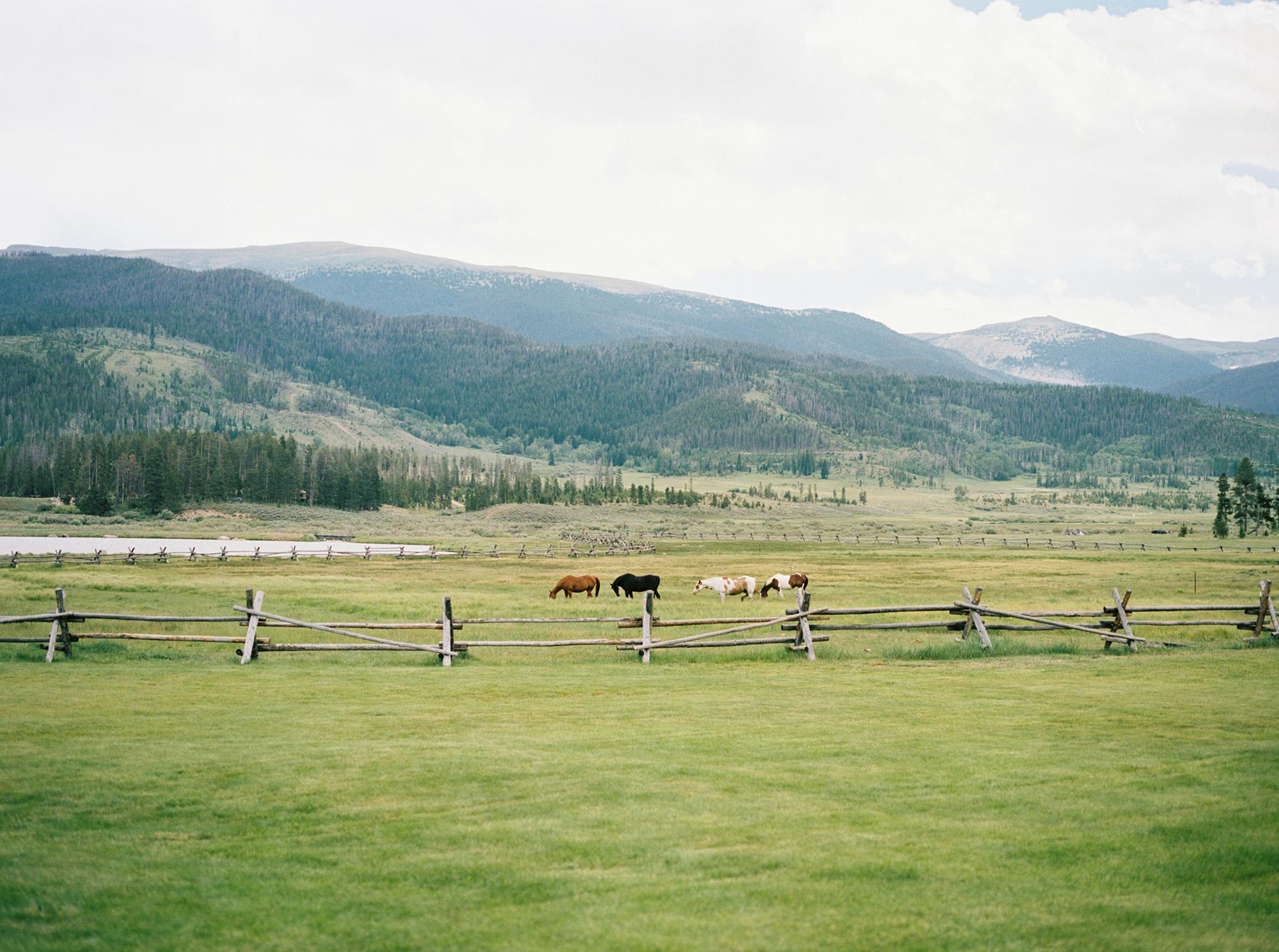 colorado-wedding-photographer-mountain-wedding-skylar-rain-1.jpg