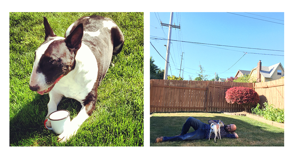 Left: Scout enjoys a cool drink on Drew and Jacob's lawn. Right: Jacob and Maude relax in the sunshine last summer.