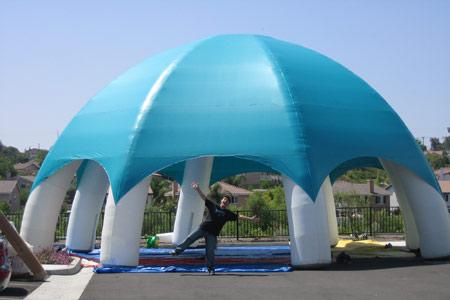 Festival Tent : $300