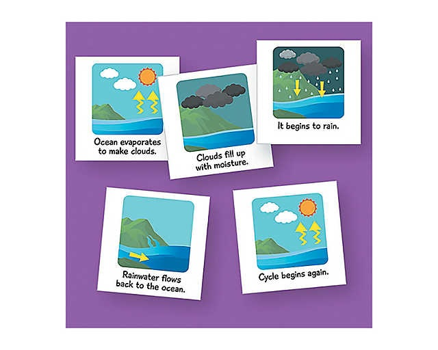 Water Cycle Magnets : $35