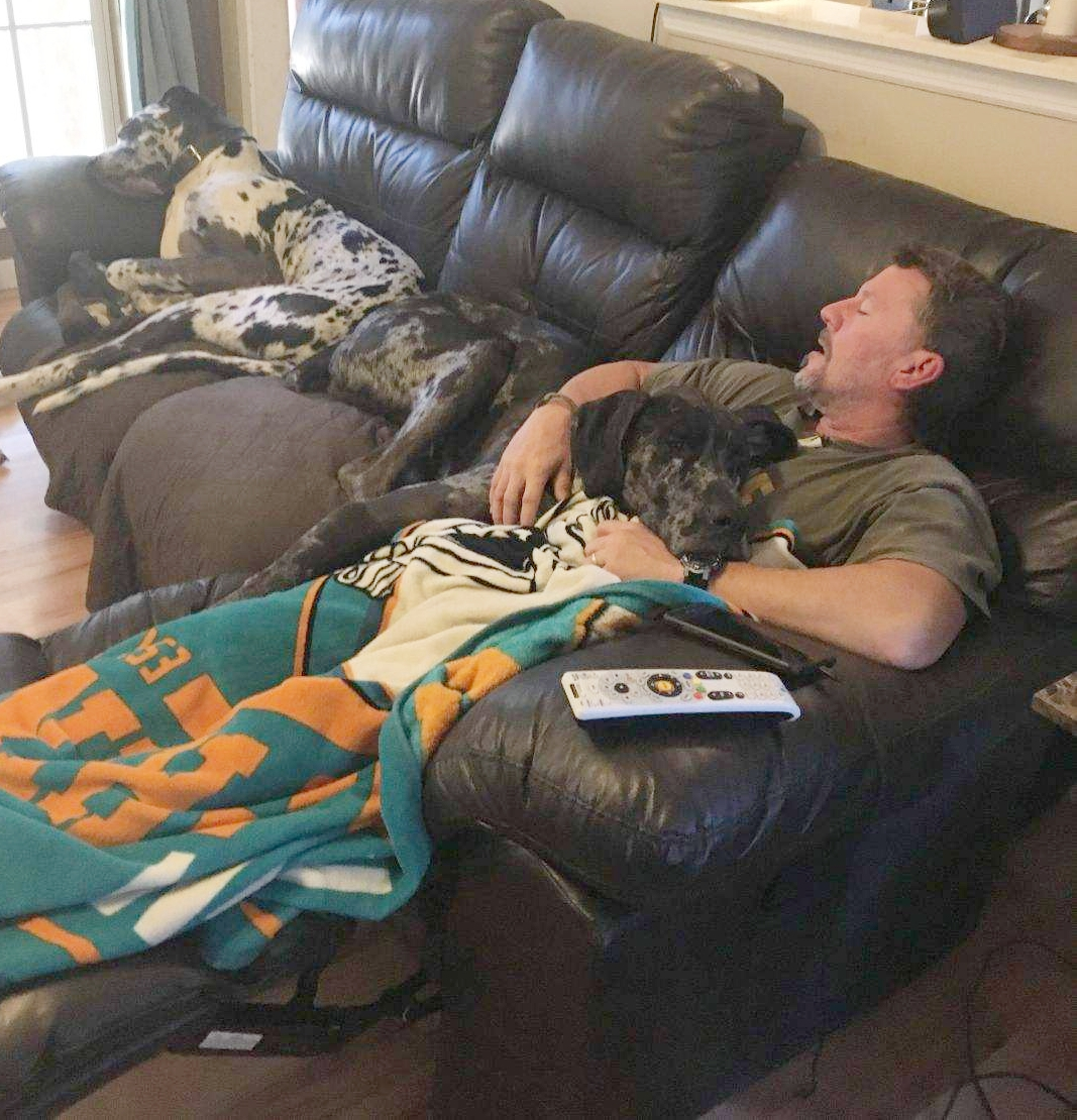 GRIFFY (AKA GREGORY) - AUG 2018   Gregory enjoys a nice nap with his new dad!