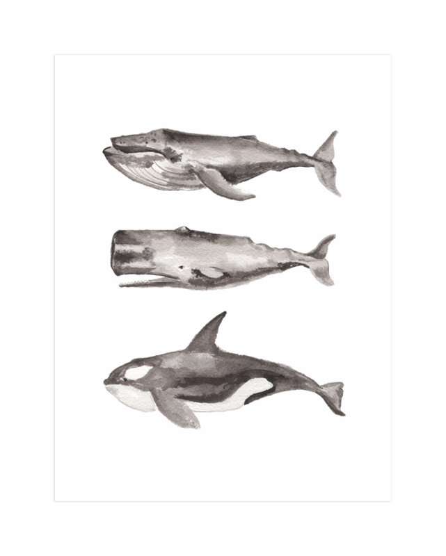 threestackedwhales.jpg