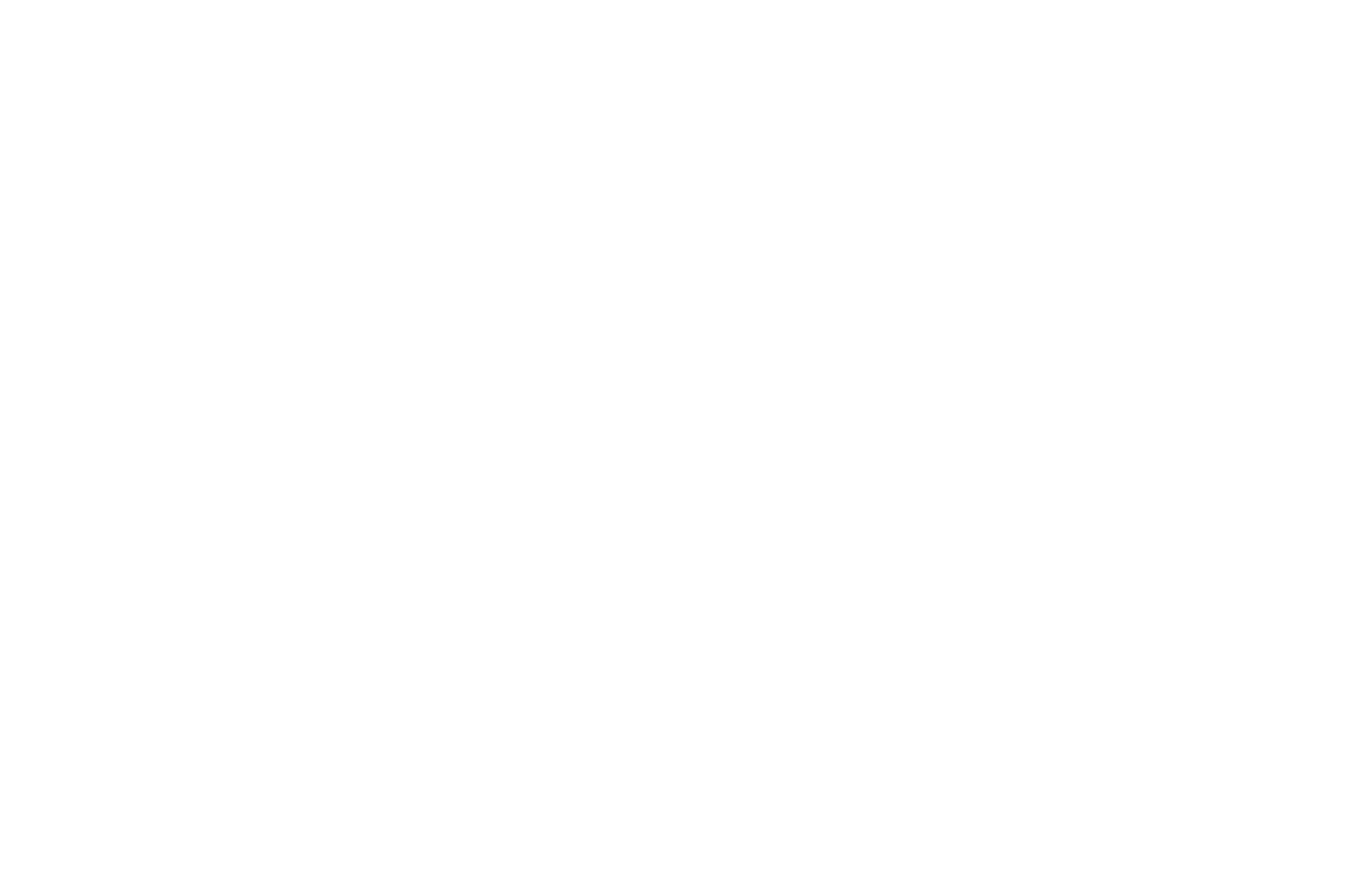 officialselection-adirondackfilmfestival-2018 (1).png