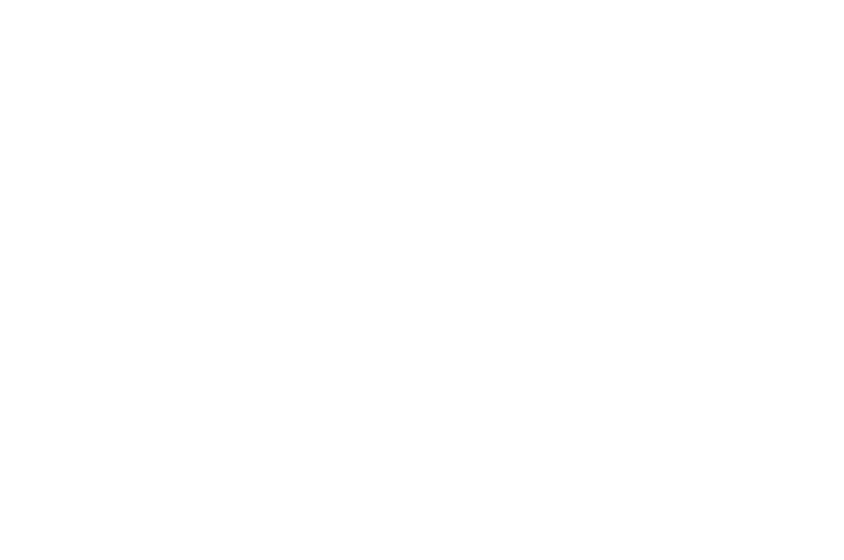 OFFICIAL SELECTION - NC Black Film Festival - 2018 (1).png