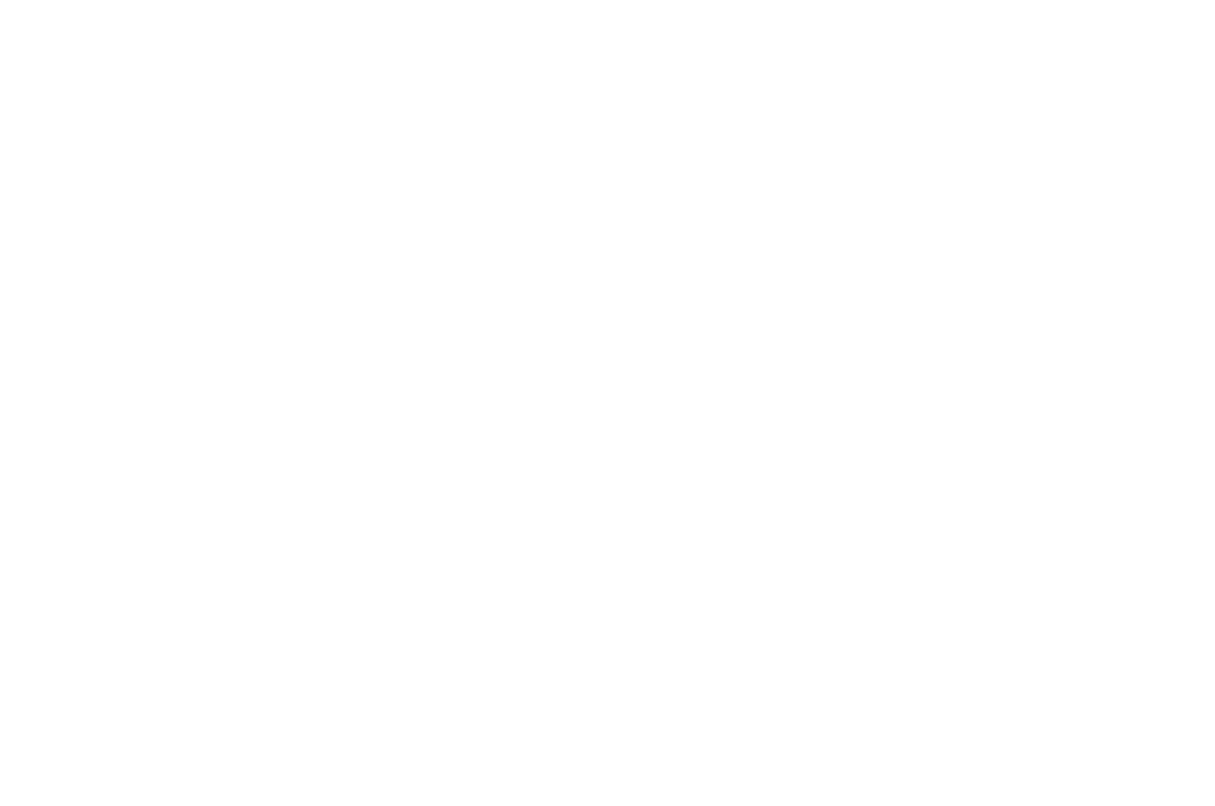 OFFICIALSELECTION-NATIONALBLACKFILMFESTIVAL-2019 (1).png