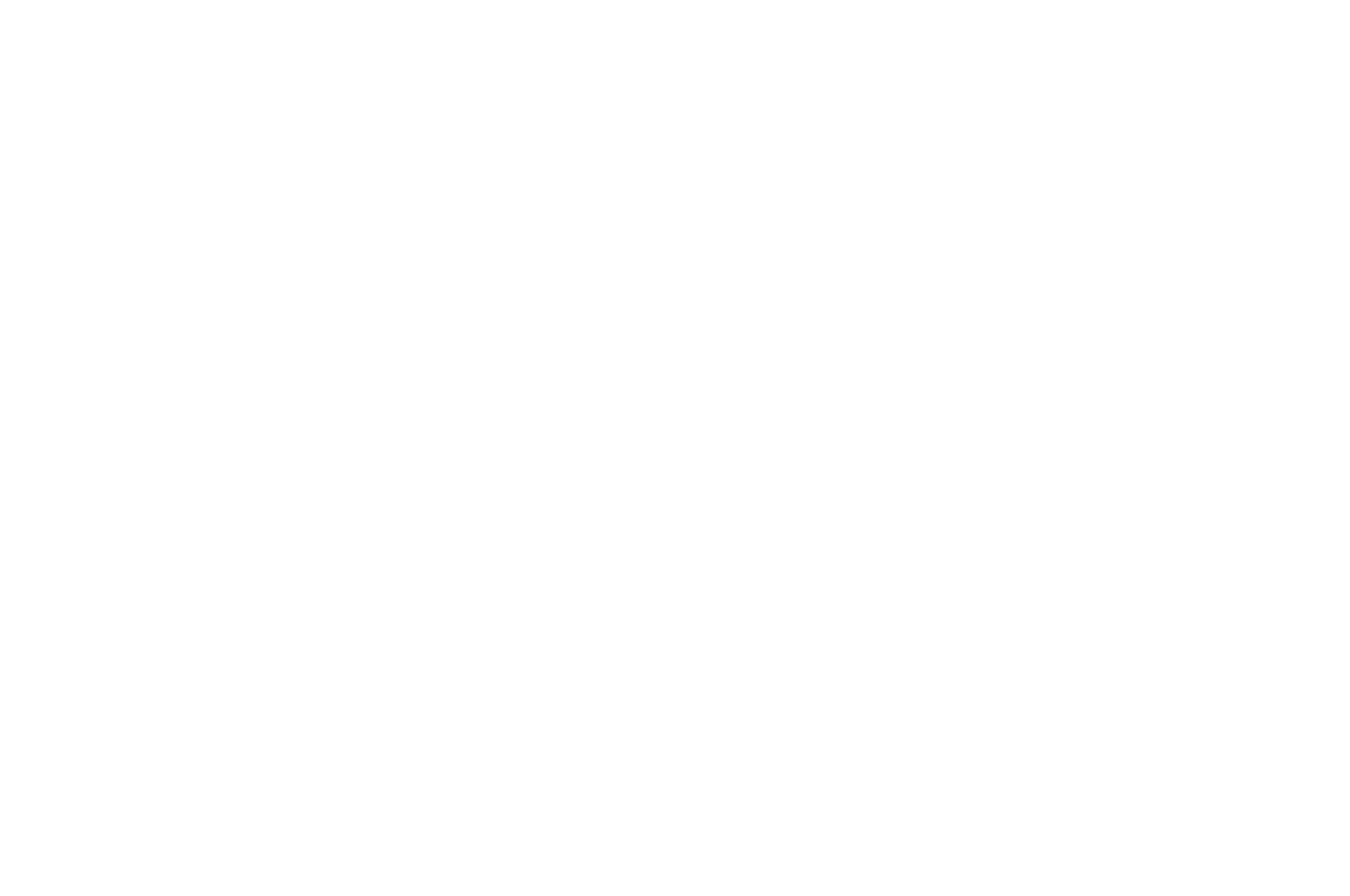 OFFICIALSELECTION-AdirondackFilmFestival-2019 (1).png