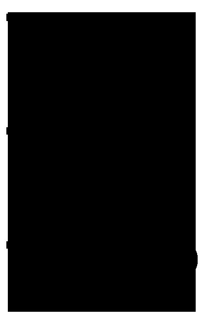 Black Transparent PNG