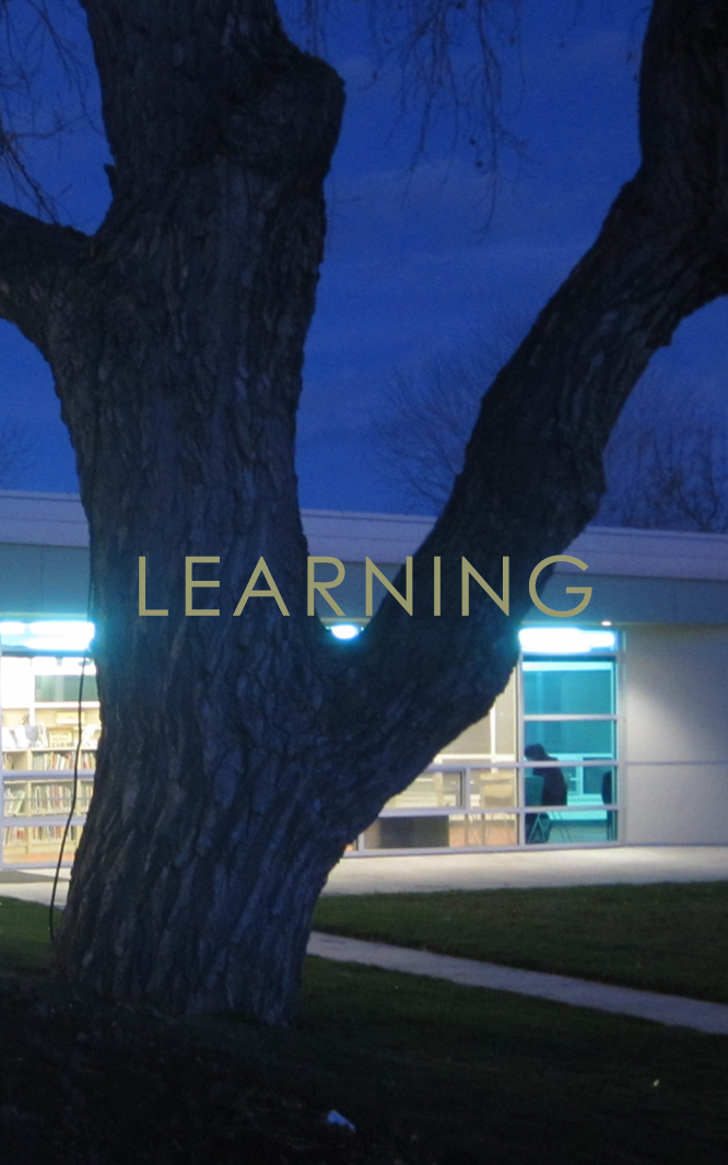 Learning - Although Radix Design is a small firm, we possess extraordinary experience in the design of highly significant public projects dedicated to learning, creativity, and discovery. Our school and library portfolio demonstrates a record of innovative, sustainable, community-centered design that we carry throughout our practice.