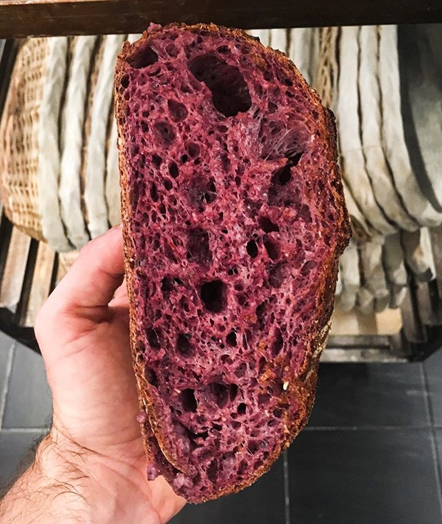 Planning on having this purple corn sourdough available for you all very soon. @janethebakery #sourdoughbread #sourdough #purplecorn #bread #realbread #breadbakery #sanfrancisco #sfbakery #janethebakery