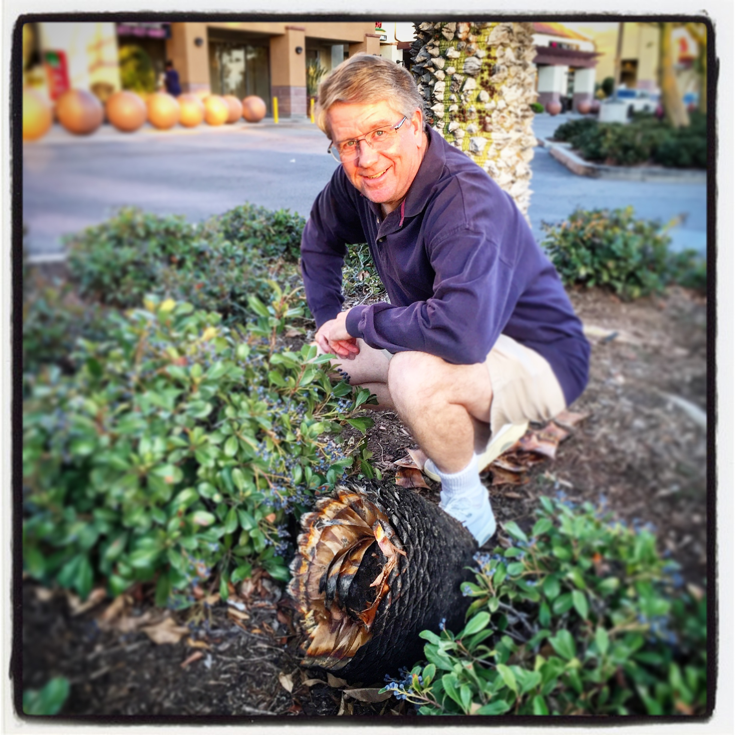 P.S. This is my dad during this shopping trip. He's posing with a giant pinecone as though he hunted it. It was pretty funny.