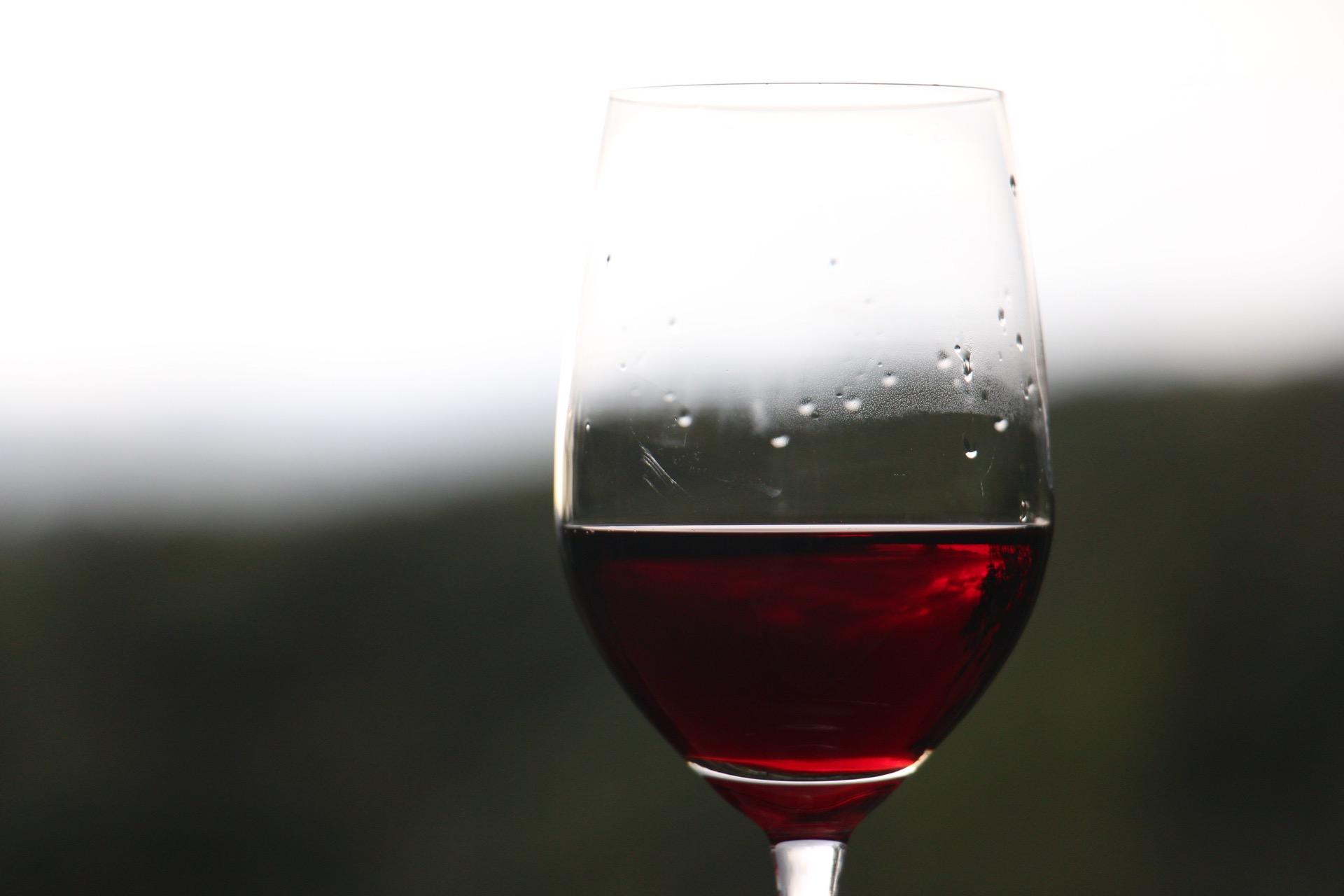 the wine idiot trader joe's wine reviews la finca malbec red wine budget wine review