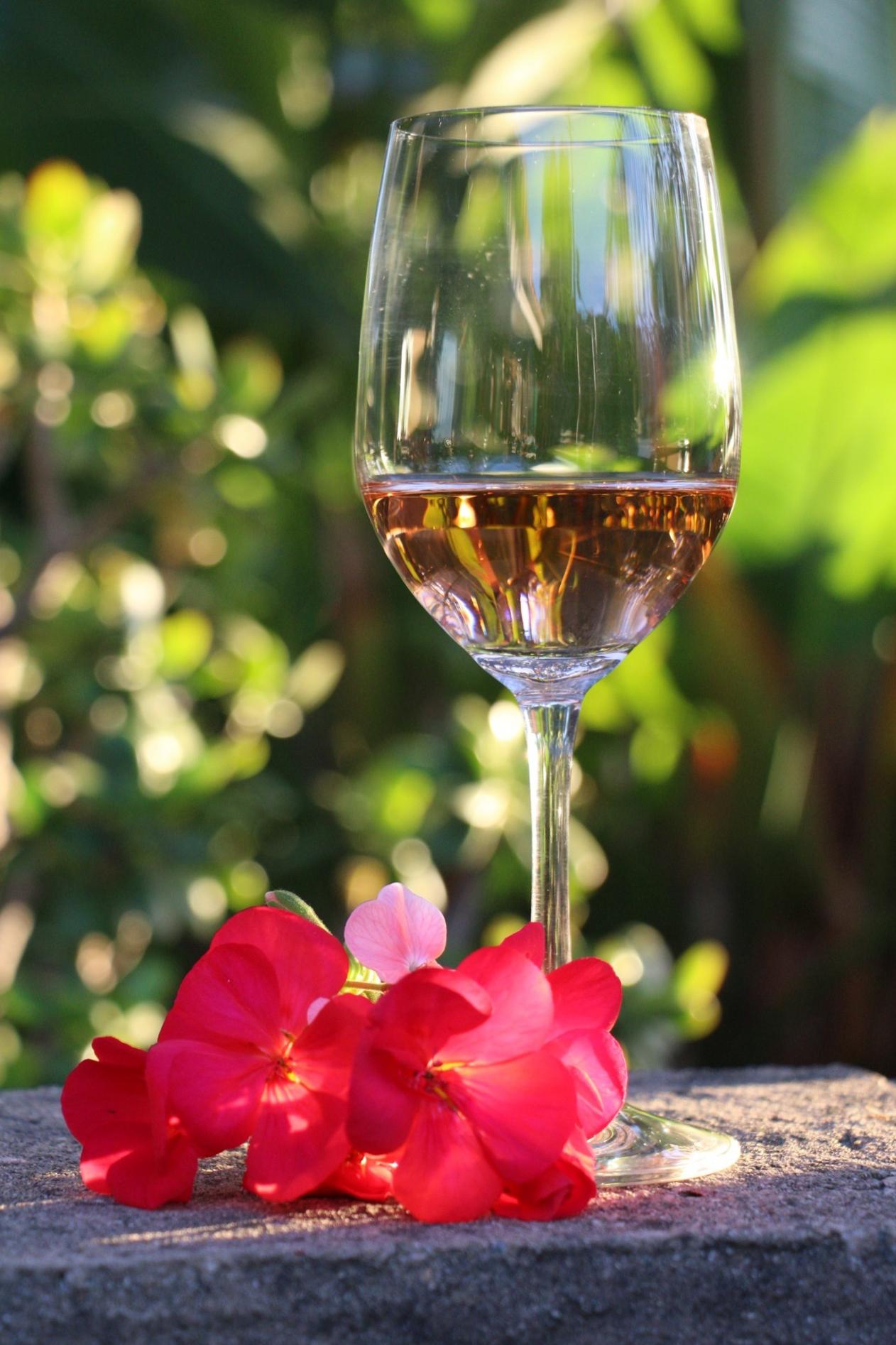 trader joe's wine reviews budget wine rose