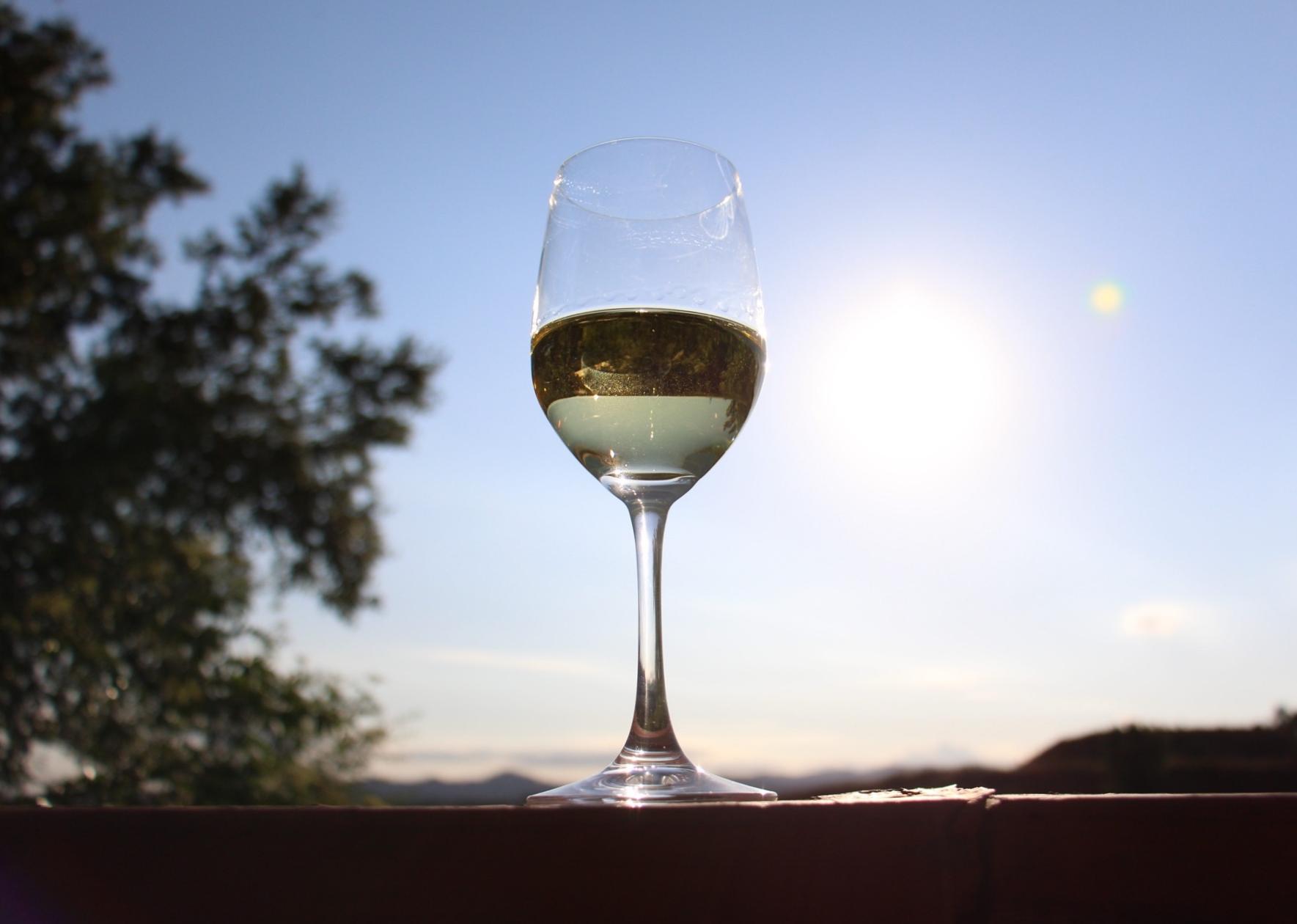 trader joe's wine reviews the wine idiot bargain wine la crema chardonnay 2013 sonoma coast review