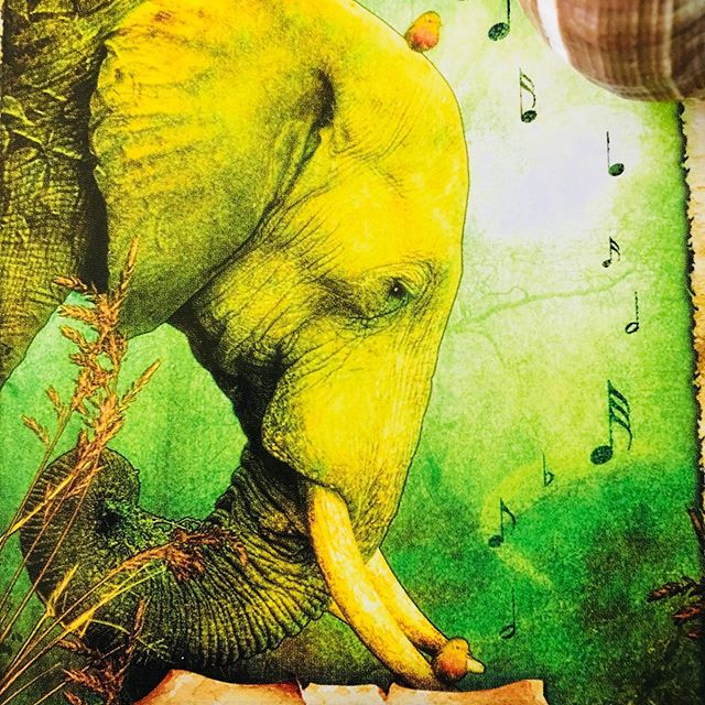 "LISTENING to INNER WISDOM  ORACLE🌿🍂🐘 Mass shootings alert us once again today to suffering and chaos. 🌿🐘 Surely we can take action! 🐲  LISTEN to the steady drumbeat of your vast heart! Reach out! 💚🐘 Some Tibetan sacred teachings say: ""Wake up in the charnal grounds"" — or cemeteries of Tibet and India. When collective suffering is intense, that is the very moment to wake up powerfully in your highest wisdom mind. 🌿🐘 I remind myself that I must keep going within, LISTEN and uplift my own mind. 🌿🐘 You can LISTEN to the world wisdom teachings pointing to ways to access inner peace. 💚💚💚💚💚💚💚 Sending love to you all and wishes you may step into your higher self and connect with universal soul guidance today. ✨☀️🌕 May the souls of those who are passing be liberated in boundless light! ✨🌈✨ Dhyana Www.dhyanaeagleton.com ✨🙏 #oraclecards #tarotloversofinstagram #theenchantedmaporacle #theenchantedmaporaclecards #outerpeacethroughinnerpeace #higherknowledge #wisdomoftheday #elephantlover #meditationeveryday #tarottribe #witchesofinstagram🔮🌙 #oraclereadings #shamanism #mystical"