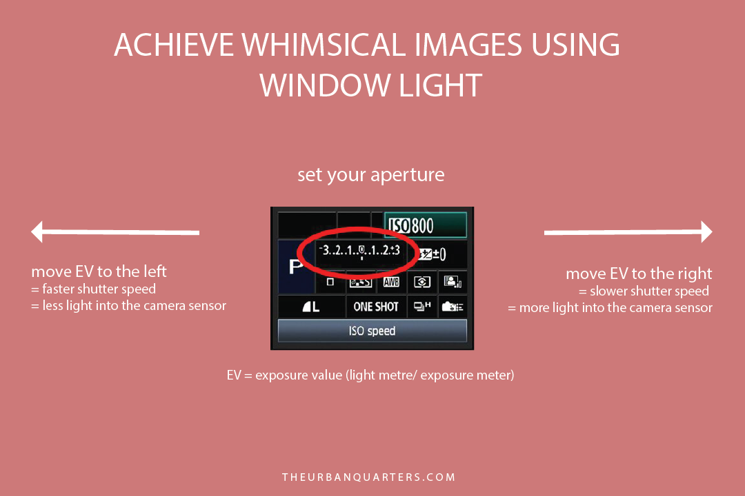 Whimsical images with window light - Light Meter.png