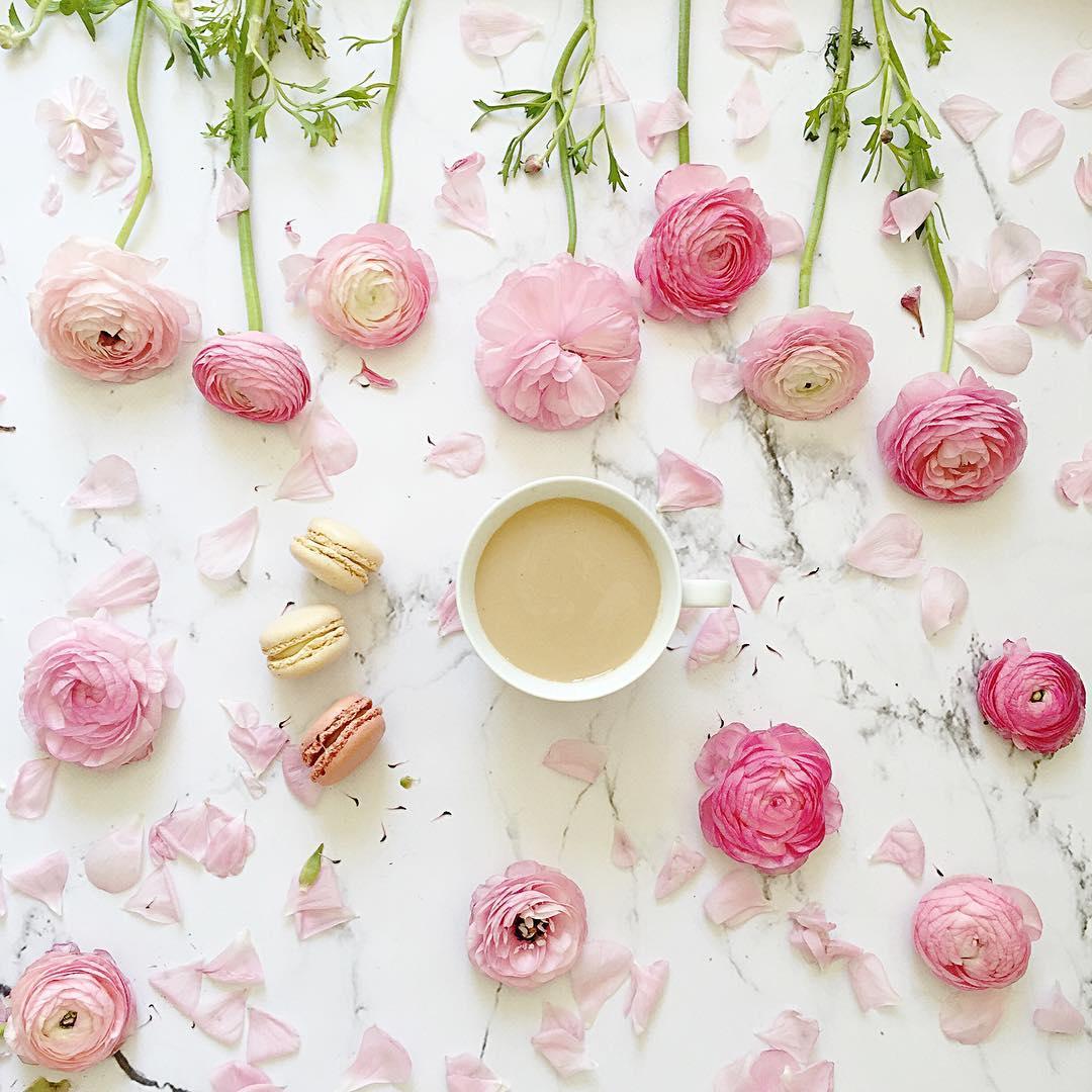 tea macaroons and pink flowers flatlay