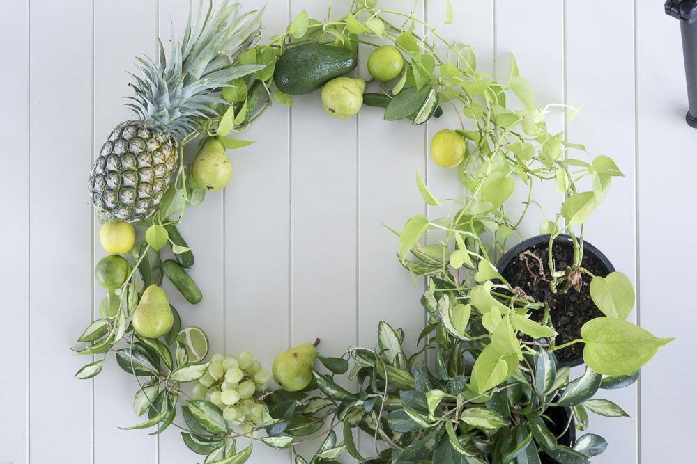 Pot plant and produce circle - the second failed idea.