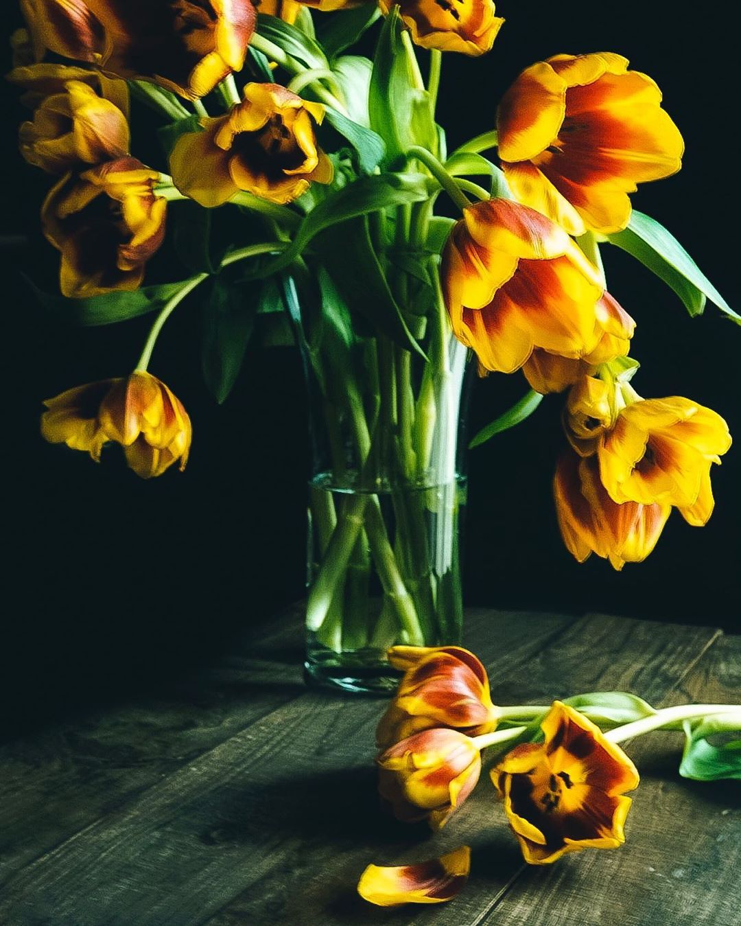 Still life image with tulips by Joe Oetemo