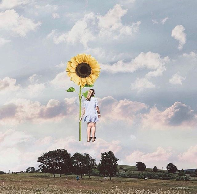 [ C A T C H  U P ] Happy Friday everyone...Marisa here with our first #cs_catchup challenge solo feature for this week. I just love this clever edit from @natalieleanneonline reminiscent of our #cs_chasethesun challenge during our lighting month...or should I say it's more like chasing sunflowers 🌻 Thank you Natalie for this gorgeous image 🙌🏻 It's the weekend so you still have plenty of time to catch up this week. Please remember to tag @creativelysquared and #cs_catchup so I can easily find your images 🤗 Happy faffing! Marisa xx @marisa.young ••• Learn, be inspired, experiment and build a killer content creation portfolio by participating in our creative challenges ——————— Monthly topic: Lighting + Foodie month July 29 - August 4 theme 'Catch up' 💡 Lets catch up on what we have learnt over the last 2 months of challenges 💡 To be featured tag your new images with #cs_catchup @creativelysquared ——————— Need inspo? 💡See 'Foodie' and 'Lighting' highlight for tutorials and resources