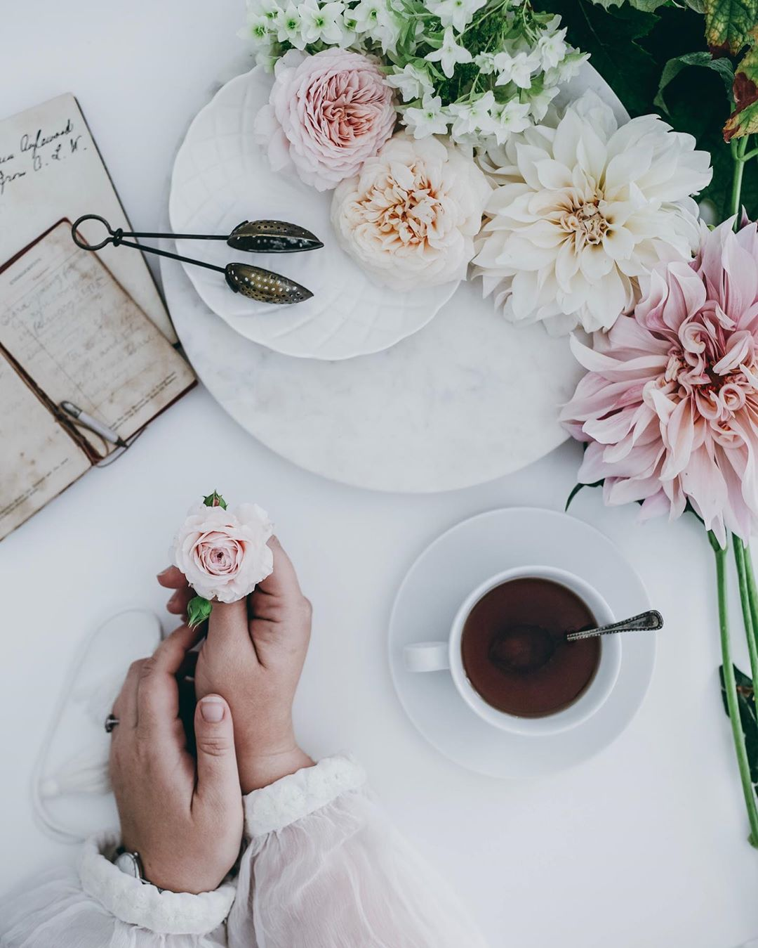 A simple grasp of a flower with morning tea. Source:  @katherinedorrington